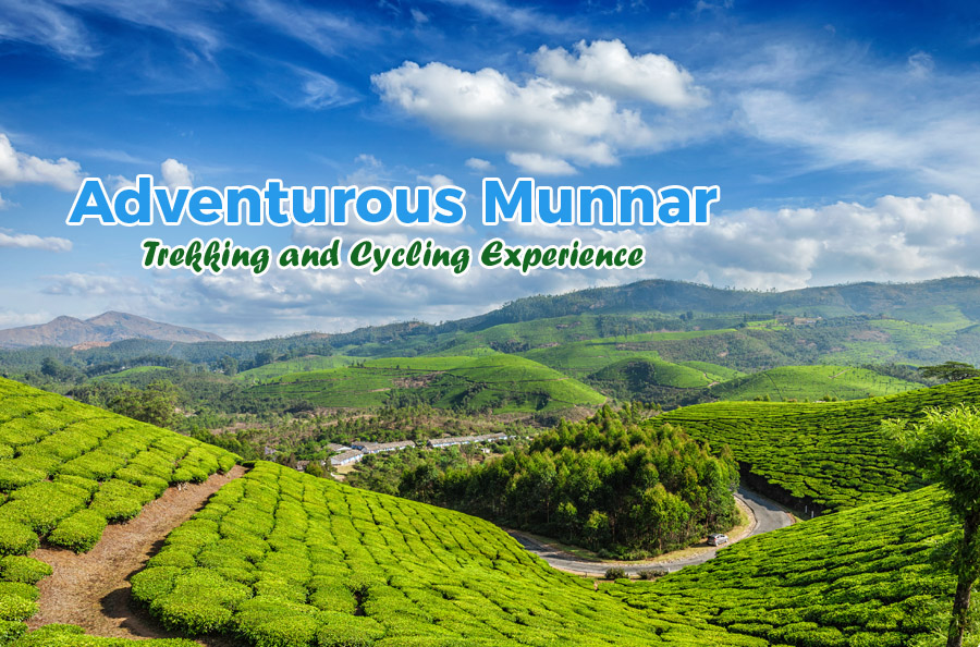 Munnar Summer Special Tour Packages