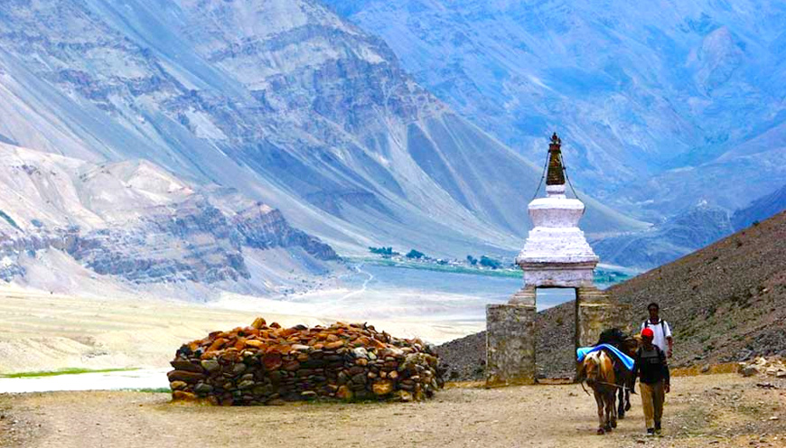 Nubra Summer Special Tour Packages